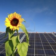 Giving Renewables a Boost: The beneFITs of Feed-in Tariffs